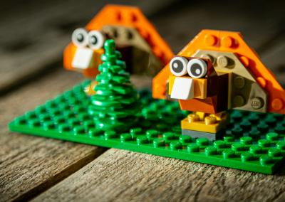 LEGO winkel Den Dolder