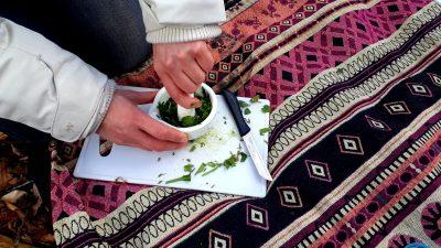 Workshop Eetbare planten Den Dolder